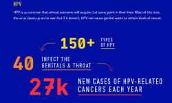 HPV-strains-cancer-related